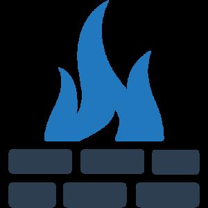 Firewalls/VPN/SD-WAN/SASE